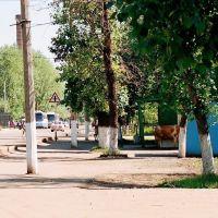 Centrum Ust Ordynski, Усть-Ордынский
