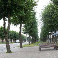 Улица Ленина, Нальчик