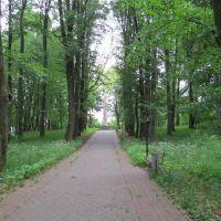 Дорожка к памятнику, Багратионовск