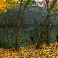 Позиция бывшей немецкой дальнобойной батареи в Балтийске. Первый снарядный бункер, вид с западной стороны., Балтийск