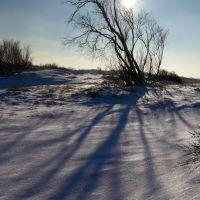 Зимние тени на прибрежных дюнах в Балтийске., Балтийск