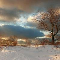 Балтийская зима. 31.12.2010 г., Балтийск