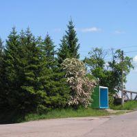 автобусная остановка у моста, Гвардейск