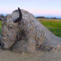 Песчаная скульптура Буйвол, Гурьевск