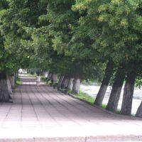 promenade, Гусев