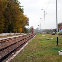 Station tracks (view of the north), Железнодорожный