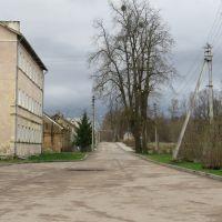 Улица, Краснознаменск