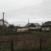 garden, Краснознаменск