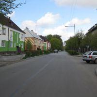 ул.Артиллерийская, Мамоново