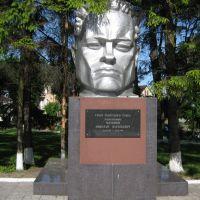 Памятник Мамонову Николаю Васильевичу, Мамоново