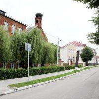 Больница, Мамоново