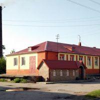 Городской музей, Мамоново