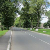 Europaradweg R1 in Mamonowo, Мамоново