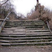 Старая лестница, Мамоново