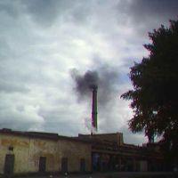 Hell Factory, Неман