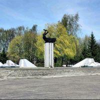 Центральная площадь. Мемориал., Нестеров