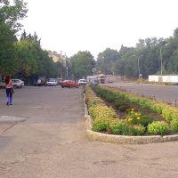 Центральная площадь 2001, Нестеров