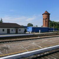 Nesterov railway station, Нестеров