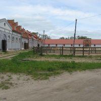 Gestütsställe in Weedern, Озерск