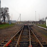 Railway, Полесск