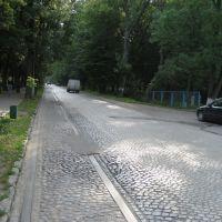 улица Кутузова Правдинск, Правдинск