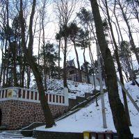Дом на пригорке, Светлогорск