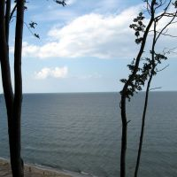 Балтийское море. Штиль. Вид с верхушки откоса. г.Светлогорск (ранее Rauschen), Светлогорск