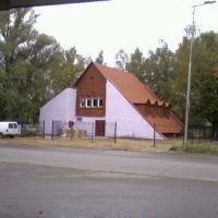 "Kafe ""A forest"", Светлый"