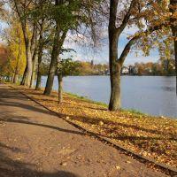 Осень. Аллея вдоль северного берега Городского пруда в Советске., Советск
