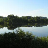 река Молога, г.Бежецк, Бежецк