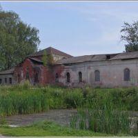 Бежецк. Покровская церковь. 08.2012., Бежецк