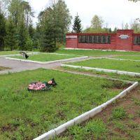 город Белый Петропавловское кладбище, Белый
