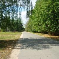 Заводская улица (в сторону Волги), Белый Городок