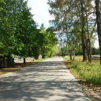 Заводская улица(в центр посёлка), Белый Городок