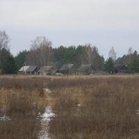 Путь к Дубровке, Березайка