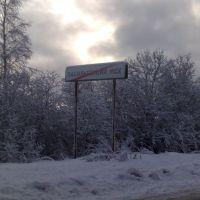 Добро Пожаловать!, Васильевский Мох