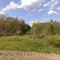 перекрёсток дорога на озерок-кладбище, Васильевский Мох
