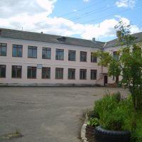 Школа пос. Васильевский Мох, Васильевский Мох