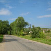 Станционное шоссе, Васильевский Мох