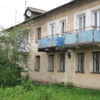 Дом на Бассейной улице, Васильевский Мох