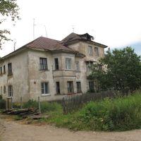 Дом на Первомайской, Васильевский Мох