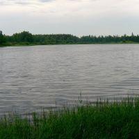 Вид на озеро, Жарковский