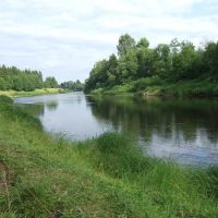 Река Межа (чуть ниже Кривой берёзы), Жарковский