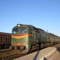 Пригородный поезд Ржев-Новосокольники на ст.Западная Двина, Западная Двина