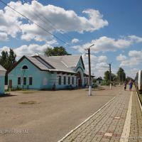 Западная Двина, Западная Двина