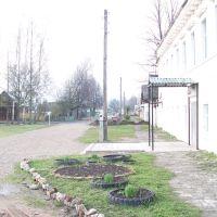 Школа, Зубцов