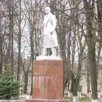 Ленин, Зубцов