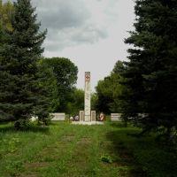 Памятник лётчику, Изоплит