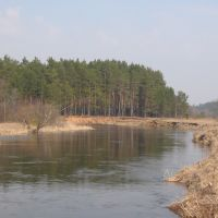 Река Осуга близ деревни Машутино, Калинин