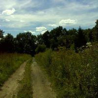 Дорога к церкви-усыпальнице_1, Калинин